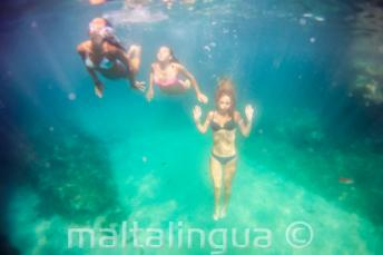3 amis nageant sous l'eau.